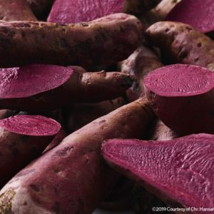 Introducing the Hansen sweet potato™ – the secret behind the market's best carmine alternative