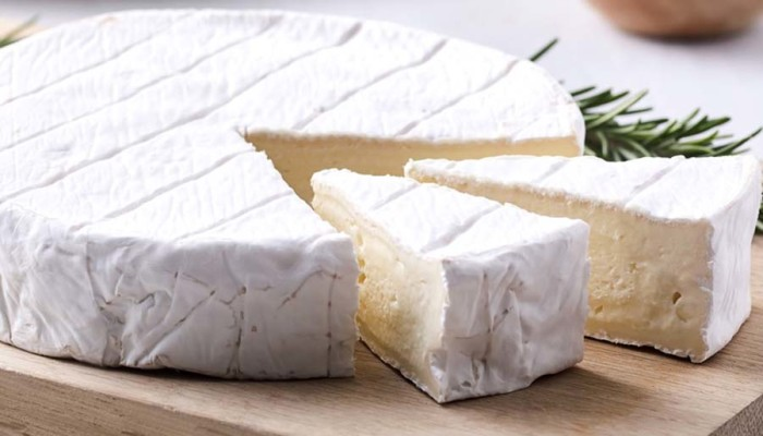 Нови стартер култури со кои се добиваат свежи и кремави бели сирења