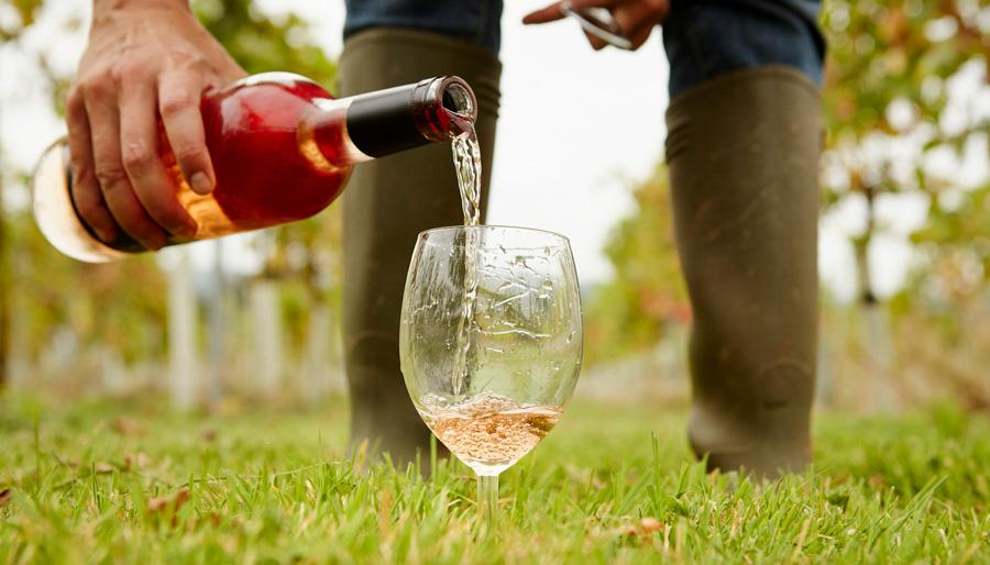 Нови можности за вино со или без сулфити